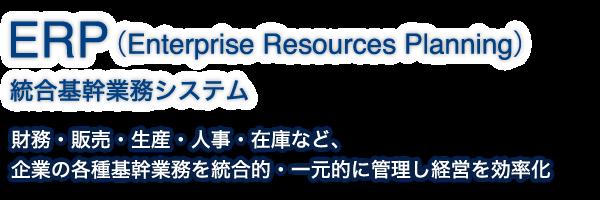 ERP(Enterprise Resources Planning)|統合基幹業務システム|財務・販売・生産・人事・在庫など、企業の各種基幹業務を統合的・一元的に管理し経営を効率化